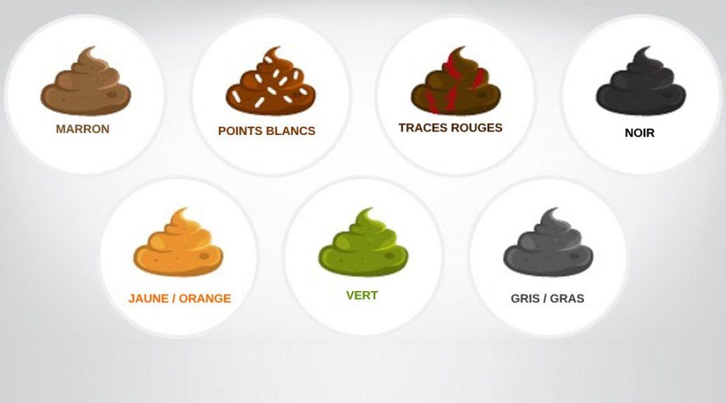 Les crottes et leur couleur   Raw feeding   Prey Model : nourrir