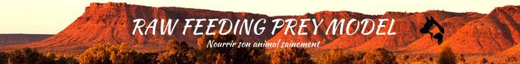 Raw Feeding Prey Model